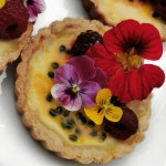 Solero cheesecake passionfruit