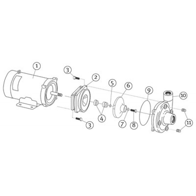 Burks DC-10 Heavy Duty 12V Pump Parts—Replacement Brushes