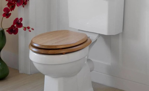 Wood VS Plastic Toilet Seats 2019(Informative Guide) - Toiletable