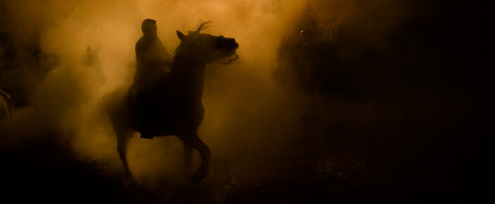 horse_ashes