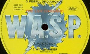 wasp 3x5