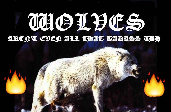 Wolves BADASS