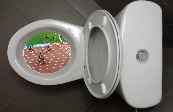 toilet-seat-up