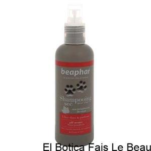 Shampooing sec premium pour chat