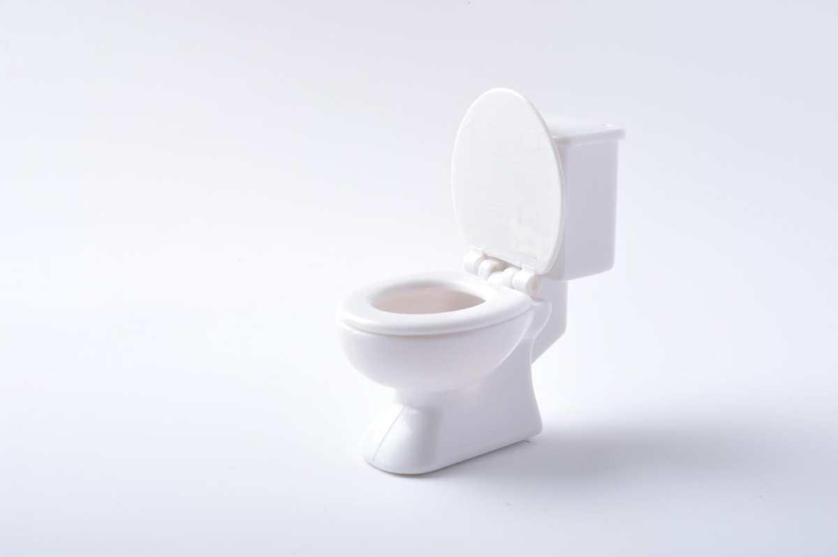重曹を使って、トイレ詰まりを直そう