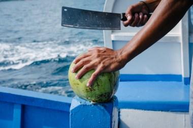 Mlad kokos, bogat s kokosovo vodo
