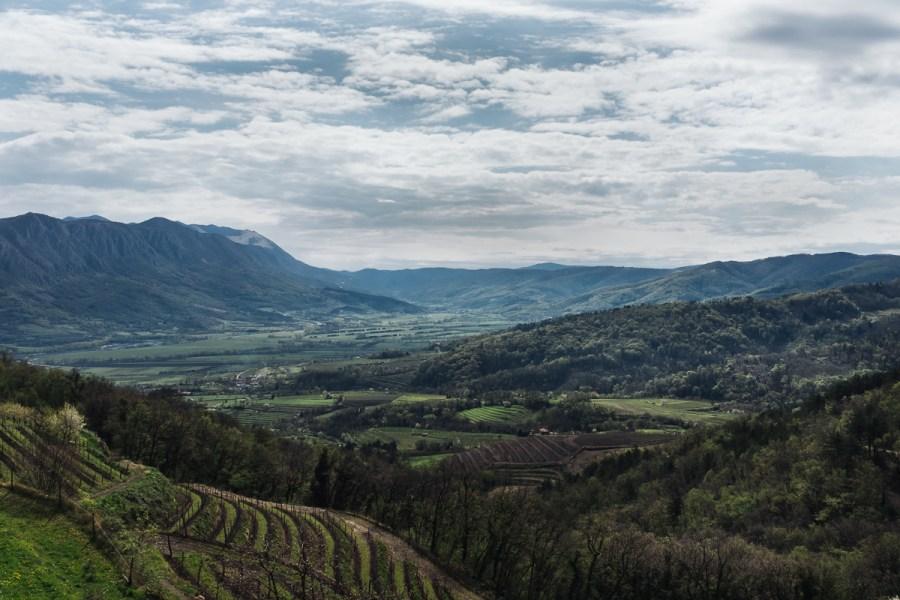 Pogled s terase vinarstva Guerila, Planina v Vipavski dolini