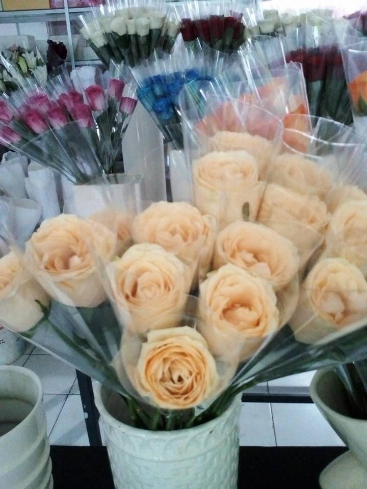 Bunga Buket Valentine  Sumenep