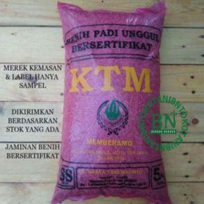 benih padi membrano