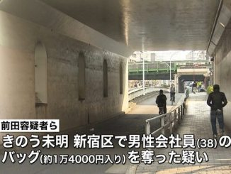 Tokyo police arrest two men in bag-snatching incident on a street in Shinjuku Ward