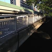 目黒橋全景