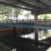 宝田橋全景