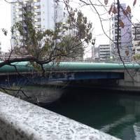 越中島橋全景