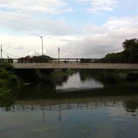 ふれあい桜橋全景
