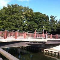 平成泉橋全景