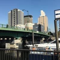 新東海橋全景