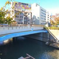 東武橋全景