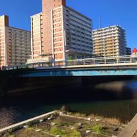 松代橋全景