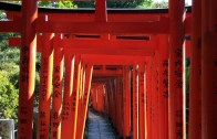 Nezu-Jinja Shrine