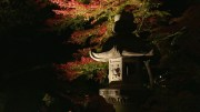 Rikugien Garden Illuminations