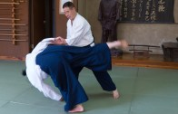 Aikido Experience with Matsumaru Sensei