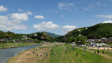 Uchiko Ikazaki Kite Fighting Festival