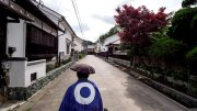 Ozu Ohanahan Street Jinrikisha Ride