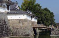 sunpu-castle