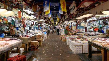 Auga Fish Market