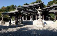 Kinkaku-ji in Summer