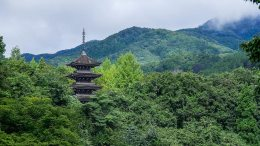 Joginyorai Saiho Temple