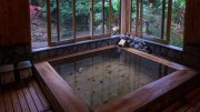 Kamigoten ryokan, built for a shogun and run by the same family for 29 generations !
