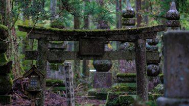 Okunoin Cemetery Part II