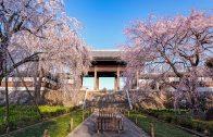 Togoji Temple