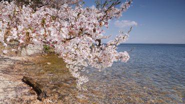 Kaizu-Osaki Peninsula