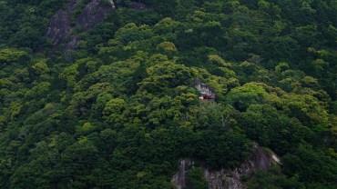 Kamikura jinja: the little shrine where the Gods came to Earth