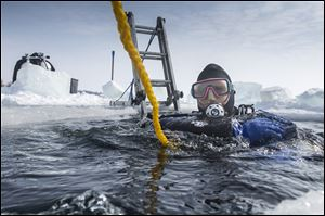 Jeff Omstead of Wheatley, Ont., begins his dive on Jana's Wreck in Colchester.