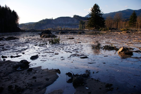 Death Toll In Washington State Mudslide Rises 14