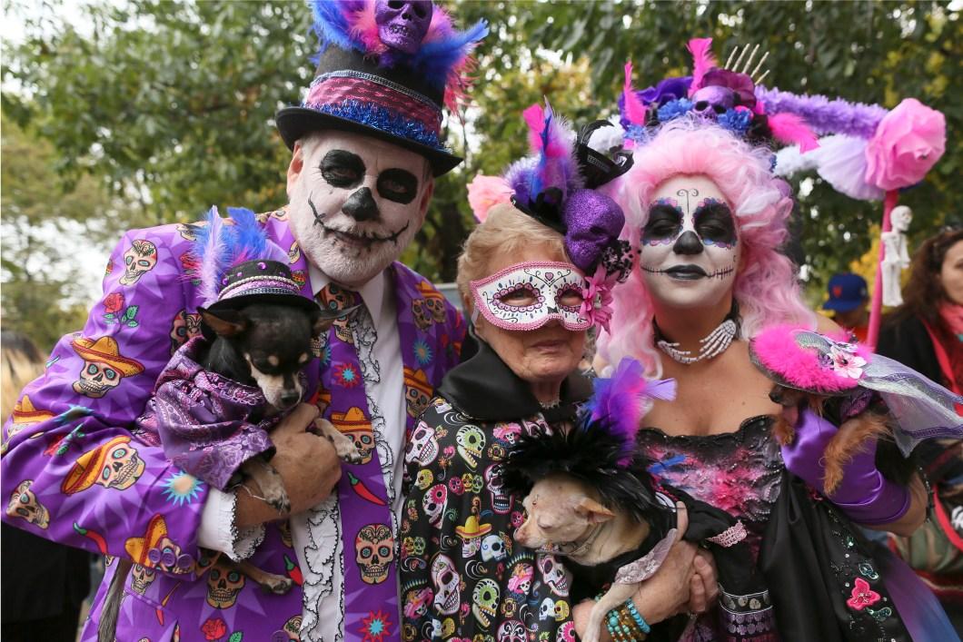 halloween costumes in dallas tx cartooncreative co