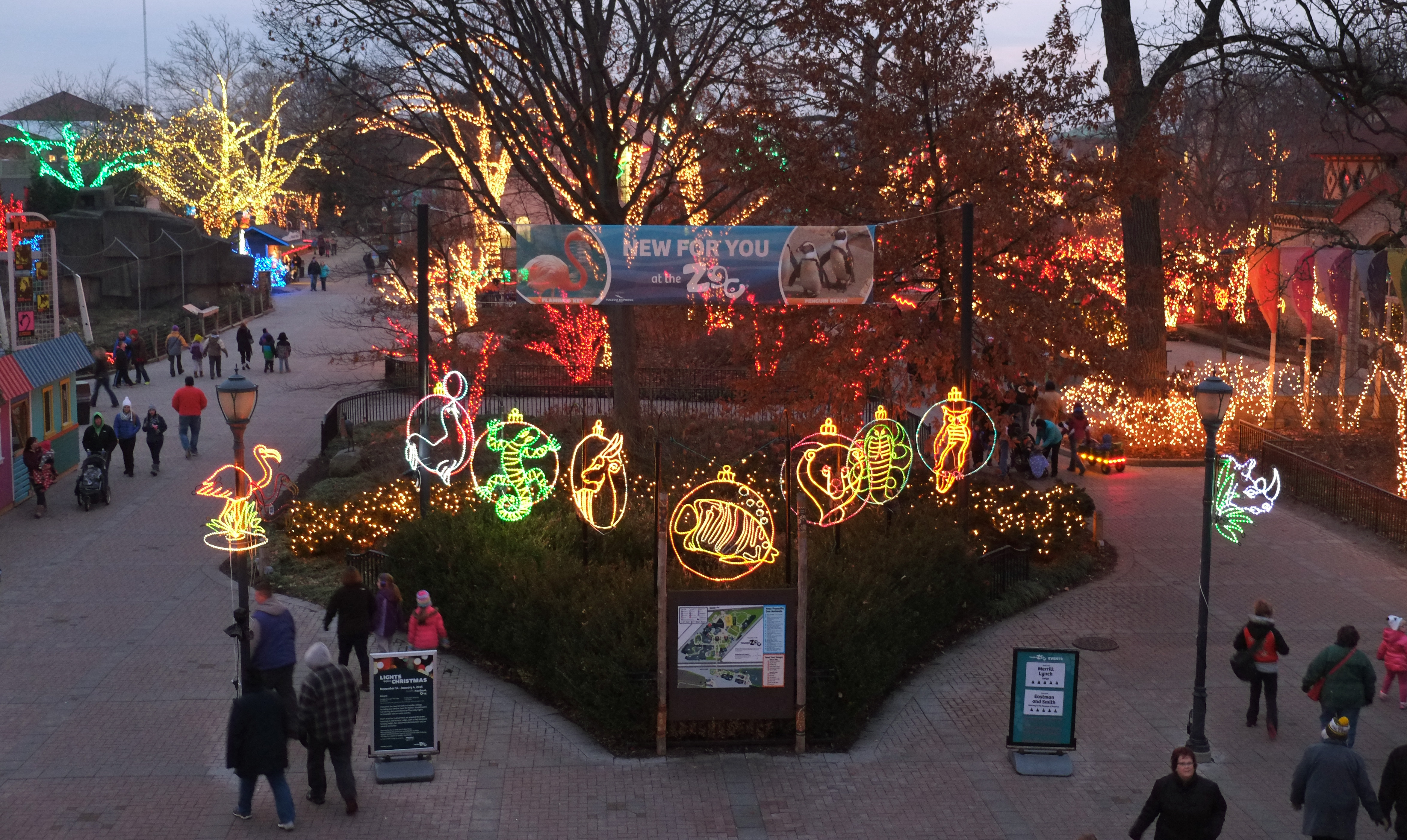 Toledo Zoo lights compete for best in US  The Blade