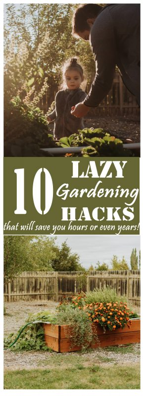 These 10 lazy gardening hacks might cost you a bit of time and effort upfront, but they will save you HOURS of labor in the long run (and even years of waiting, in some cases)!