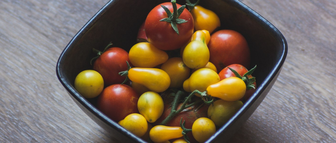 bowl of freshly harvested tomatoes