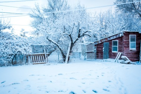 snowy backyard with red chicken coop