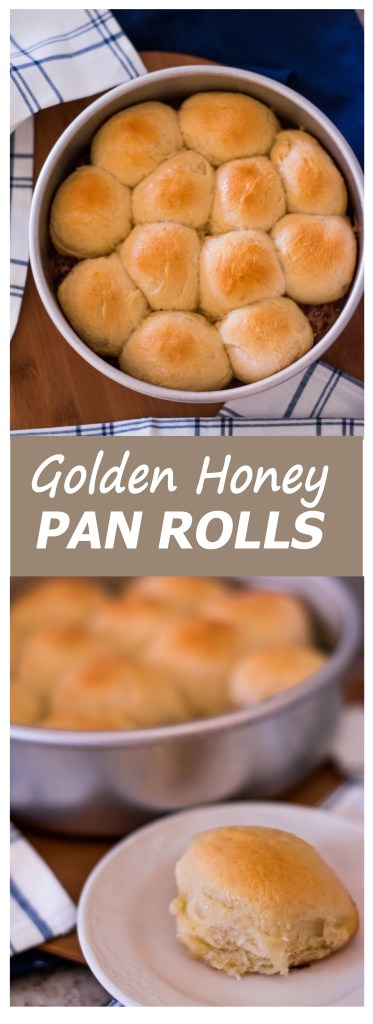 Golden Honey Pan Rolls // A fluffy, sweet dinner roll that takes half the rising time of most yeast breads!