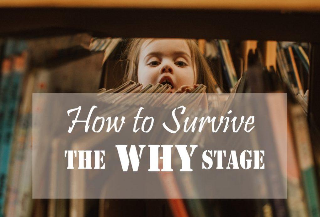 5 Strategies to Help You Keep Your Sanity When Your Preschooler is in the WHY? Stage // To Love and To Learn