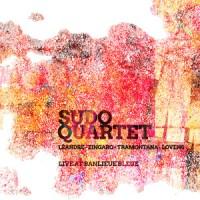 Sudo Quartet Live at Banlieue Bleue