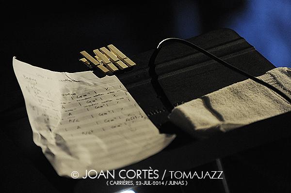 F16_YOUN SUN NAH (©Joan Cortès)_23jul14_Jazz à Junas