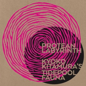 HDO 456. Kitamura / Drake - Phillips / Threadgill / Zorn / Konstrukt - Haino [Podcast]