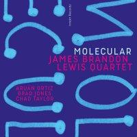 James Brandon Lewis: Molecular (CD. Intakt, 2020) [Disco de jazz] Por Rudy de Juana