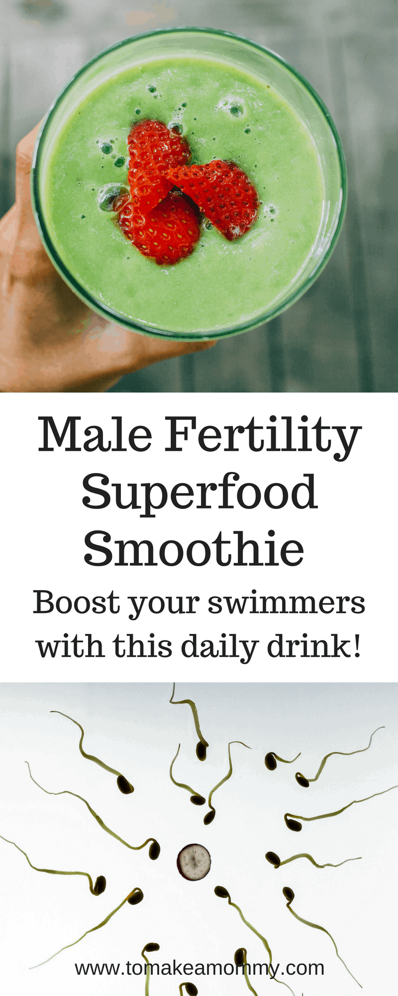 Ultimate Male Fertility Smoothie, Improve Sperm Count And
